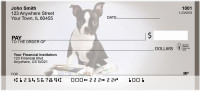 Smart Boston Terriers | BCA-80