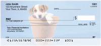 Jack Russell Terrier Puppies | BCA-82