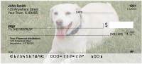 Golden Labradors Personal Checks