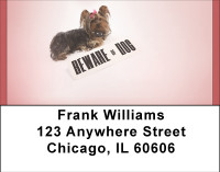 Beware Of Yorkie Dogs Address Labels