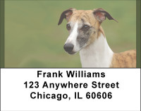 Greyhound Glances Address Labels