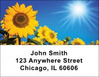 Sunflowers Address Labels