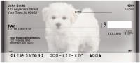 Adorable Bichons Personal Checks | ZDOG-31