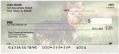 Yorkshire Terrier Personal Checks | DOG-24
