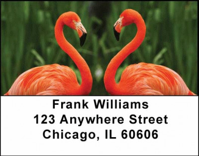 Flamingos Address Labels | LBANI-24
