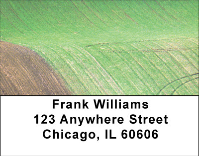Fields In Spring Address Labels | LBBBA-09