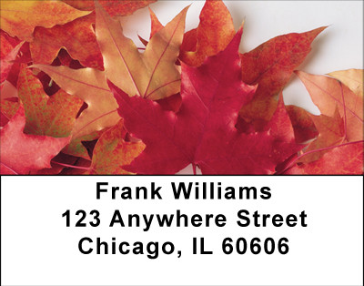 Fallen Colors On Fire Address Labels | LBBBA-50