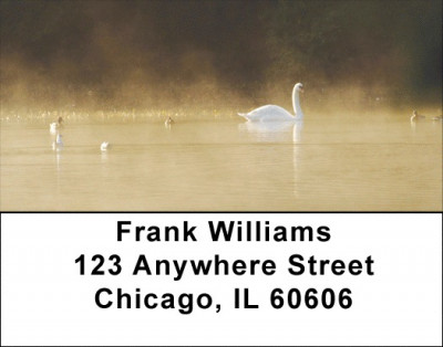 Ducks at Daybreak Address Labels | LBZANI-64