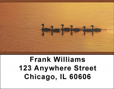 Ducks on a Golden Pond Address Labels | LBZANI-65