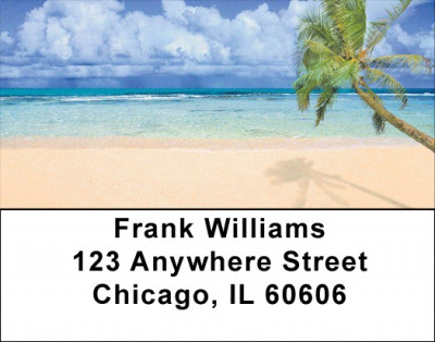 Palm Tree Paradise Address Labels | LBZSCE-22