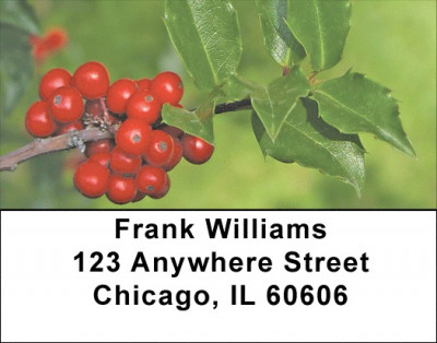Holly With Greenery Address Labels | LBZXMS-03