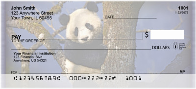 Panda Bears Personal Checks | ZANI-11