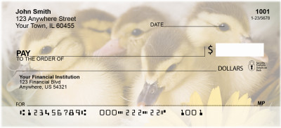 Ducklings in Spring Personal Checks | ZANI-63