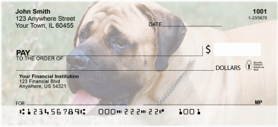 Mastiff Personal Checks | ZDOG-33