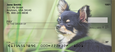 Chihuahua Field Day Personal Checks