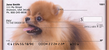 Playful Pomeranians Personal Checks