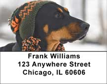 Fun Doberman Style Address Labels
