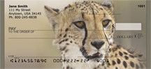 Cheetahs Personal Checks