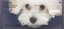 Bichon Personal Checks