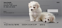 Bichon Puppies Personal Checks