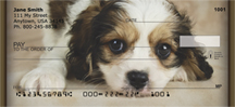 Cavachon Puppy Personal Checks