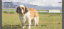 Saint Bernards Personal Checks