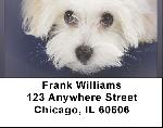 Bichon Address Labels