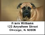 Bull Mastiff Address Labels