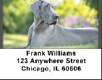 Blue Great Dane Address Labels