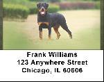 Rottweiler Patrol Address Labels
