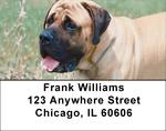 Mastiff Address Labels