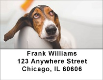 Beagle Contentment Address Labels