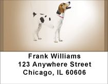 English Foxhound Address Labels