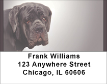 Massive Mastiff Address Labels
