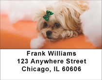Pekingese Fun Address Labels
