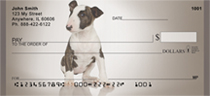 Adorable Bull Terriers Personal Checks