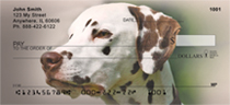 Dandy Dalmatians Personal Checks