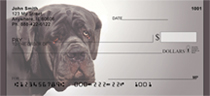 Massive Mastiff Personal Checks