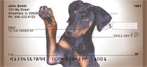 Doberman Portraits Personal Checks